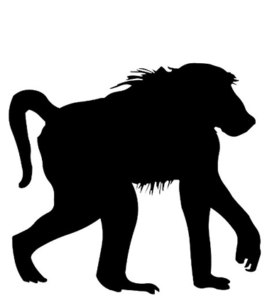 baboon target